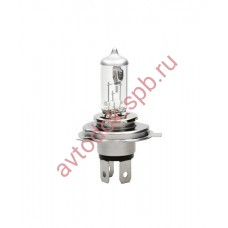 Лампа MTF H19 12v 55w (Standard+30%) LL